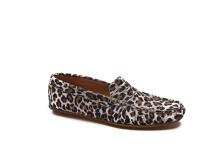 Instappers luipaard Strijen